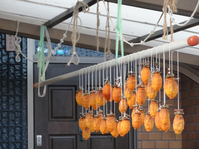 A picture of drying kaki fruits in front of a residence, while strolling the neighborhood. It brings back nice memories of pleasant autumn days.